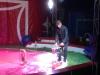 cirque-5